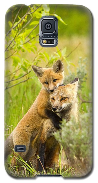 Hugs Galaxy S5 Case by Aaron Whittemore