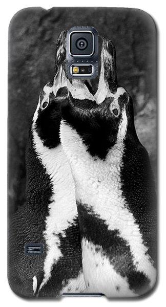 Humboldt Penguins Galaxy S5 Case