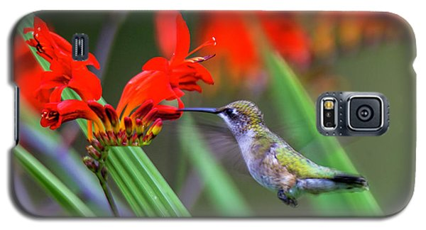 Hummer Lunch Galaxy S5 Case