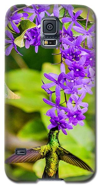 Humming Bird Flowers Galaxy S5 Case