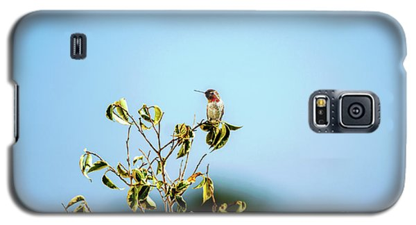 Galaxy S5 Case featuring the photograph Humming Bird On A Branch by Micah May