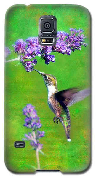 Humming Bird Visit Galaxy S5 Case by Lila Fisher-Wenzel