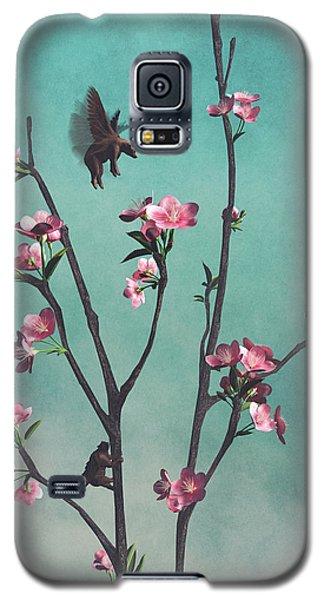 Brown Bear Galaxy S5 Case - Hummingbears by Cynthia Decker