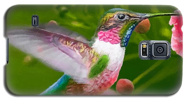 Hummingbird And Flower Painting Galaxy S5 Case