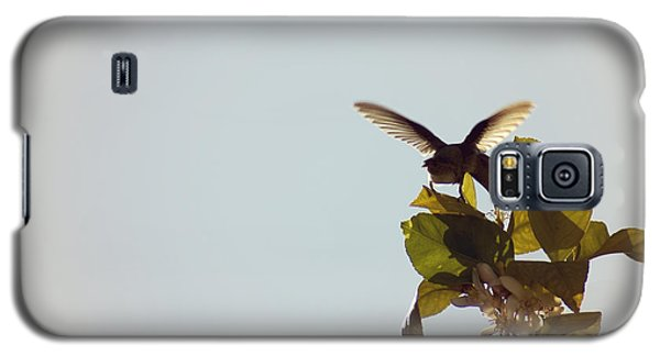 Galaxy S5 Case featuring the photograph Hummingbird And Lemon Blossoms by Cindy Garber Iverson