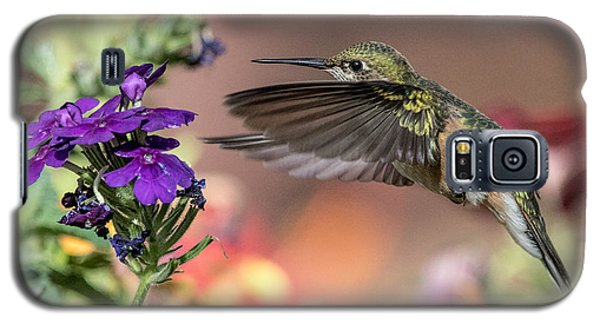Hummingbird And Purple Flower Galaxy S5 Case
