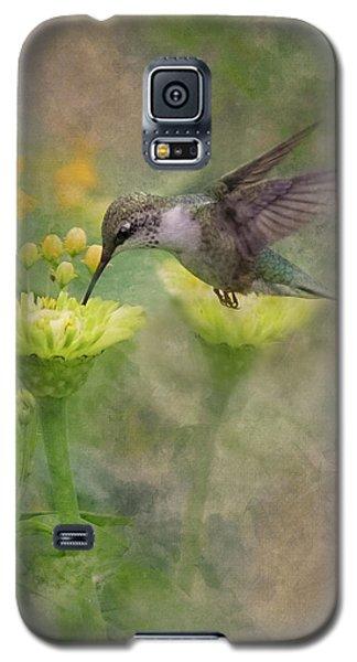 Hummingbird Art Galaxy S5 Case by Ron Grafe