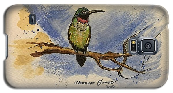 Hummingbird At Rest Galaxy S5 Case