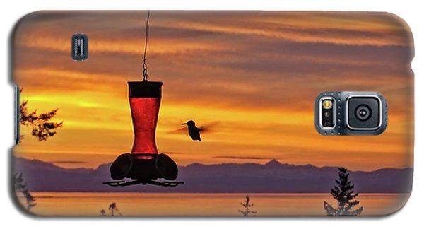 Hummingbird At Sunset. Galaxy S5 Case