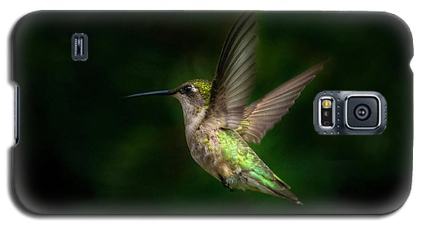 Hummingbird B Galaxy S5 Case