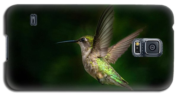 Hummingbird B Galaxy S5 Case