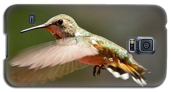 Hummingbird Facing Left Galaxy S5 Case