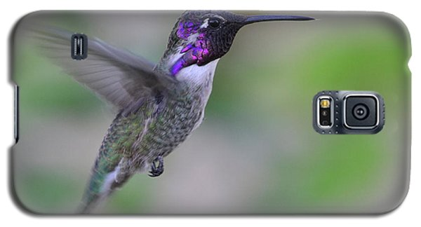 Hummingbird Flight Galaxy S5 Case
