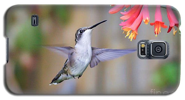 Hummingbird Happiness 2 Galaxy S5 Case by Kerri Farley