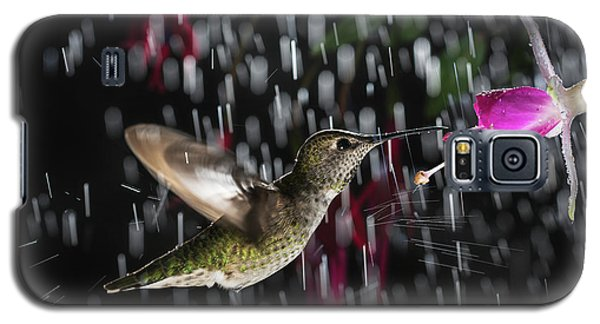 Hummingbird Hovering In Rain With Splash Galaxy S5 Case