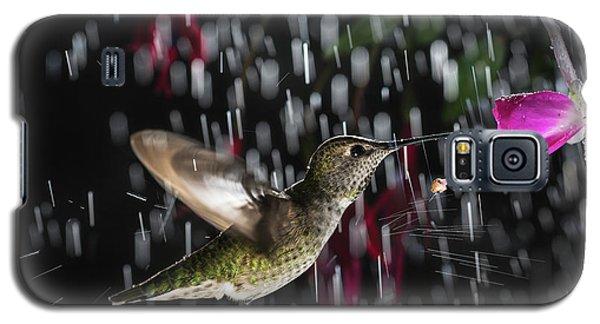 Hummingbird Hovering In Rain With Splash Galaxy S5 Case