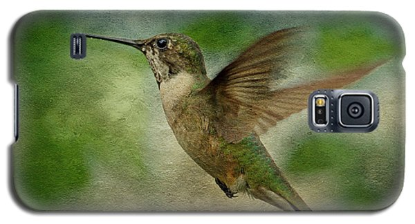 Hummingbird In Flight II Galaxy S5 Case