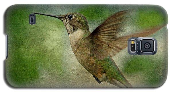 Hummingbird In Flight II Galaxy S5 Case