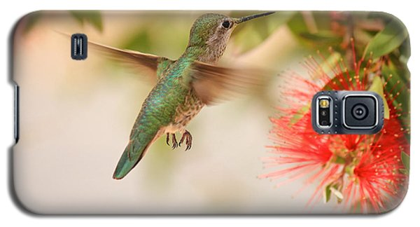 Hummingbird In Paradise Galaxy S5 Case by Penny Meyers