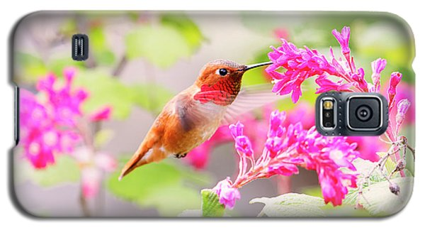 Hummingbird In Spring Galaxy S5 Case by Peggy Collins