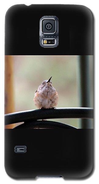 Baby Hummingbird Galaxy S5 Case