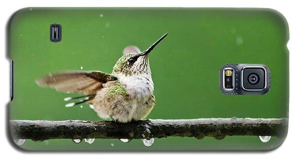 Hummingbird In The Rain Galaxy S5 Case
