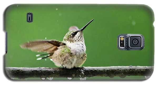 Hummingbird In The Rain Galaxy S5 Case