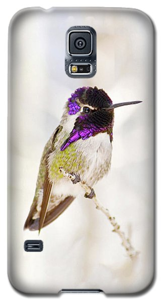 Galaxy S5 Case featuring the photograph Hummingbird Larger Background by Rebecca Margraf