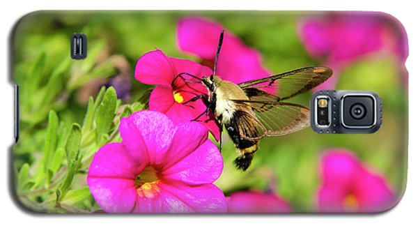 Galaxy S5 Case featuring the photograph Hummingbird Moth by Christina Rollo