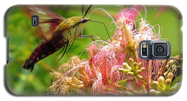 Galaxy S5 Case featuring the photograph Hummingbird Moth by Phyllis Beiser