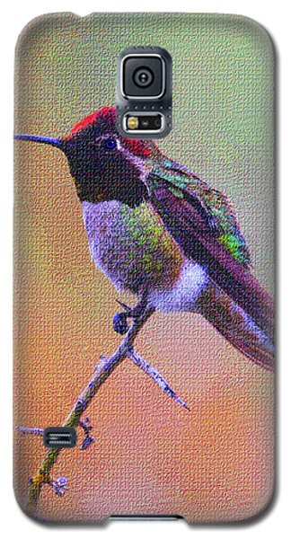 Hummingbird On A Stick Galaxy S5 Case by Tom Janca