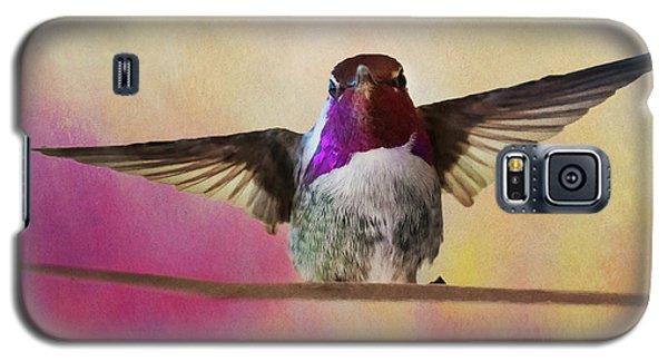Hummingbird On A Wire Galaxy S5 Case