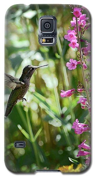 Hummingbird On Perry's Penstemon Galaxy S5 Case