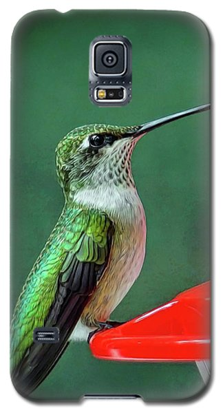 Hummingbird Portrait Galaxy S5 Case by Sue Melvin