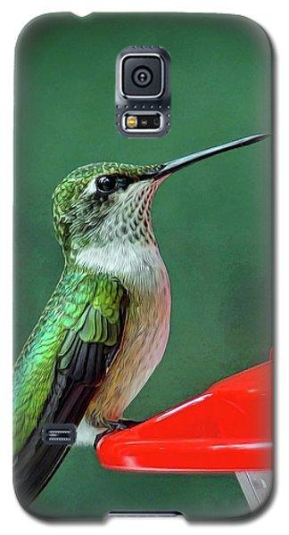 Hummingbird Portrait Galaxy S5 Case