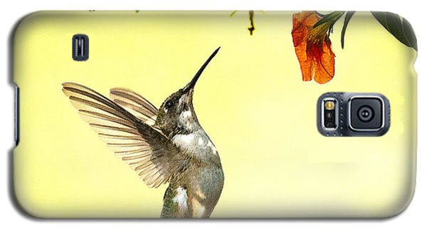 Hummingbird Under The Floral Canopy Galaxy S5 Case