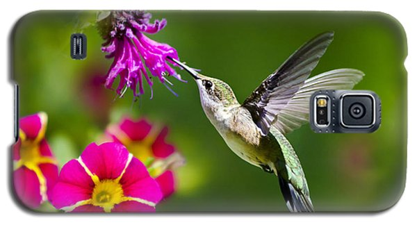 Galaxy S5 Case featuring the photograph Hummingbird With Flower by Christina Rollo