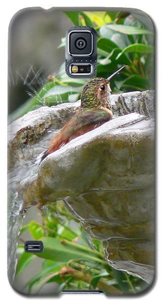 Hummingbirds Do Take Baths Galaxy S5 Case