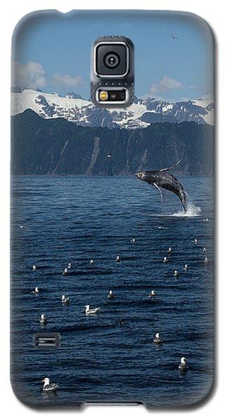 Humpback Whale Breach 3.1. Mp Galaxy S5 Case