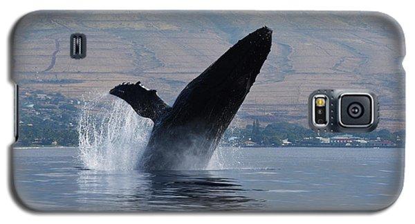 Humpback Whale Breach Galaxy S5 Case by Jennifer Ancker