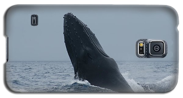 Galaxy S5 Case featuring the photograph Humpback Whale Breaching by Gary Crockett