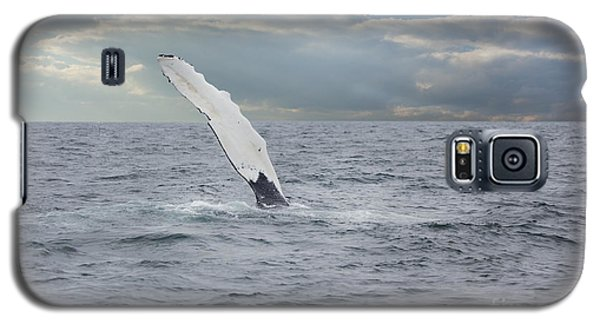 Humpback Whale Fin Slapping Galaxy S5 Case
