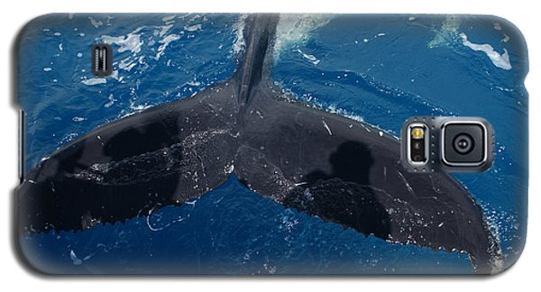 Galaxy S5 Case featuring the photograph Humpback Whale Tail With Human Shadows by Gary Crockett