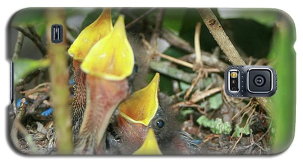 Galaxy S5 Case featuring the photograph Hungry Baby Birds by Jerry Battle