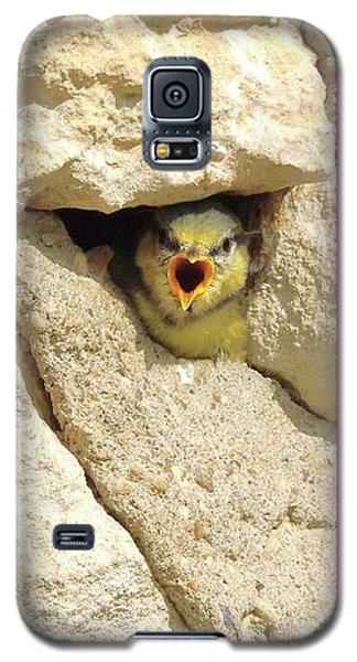 Hungry Chick Galaxy S5 Case