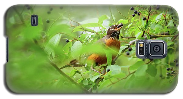 Galaxy S5 Case featuring the photograph Hungry Robin by Debby Herold