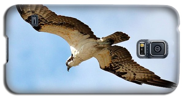 Hunter Osprey Galaxy S5 Case
