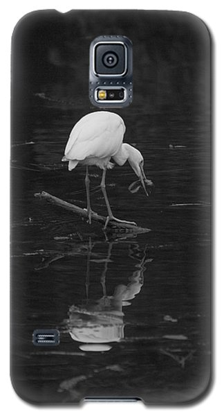 Galaxy S5 Case featuring the photograph Hunting Egret by Joshua House