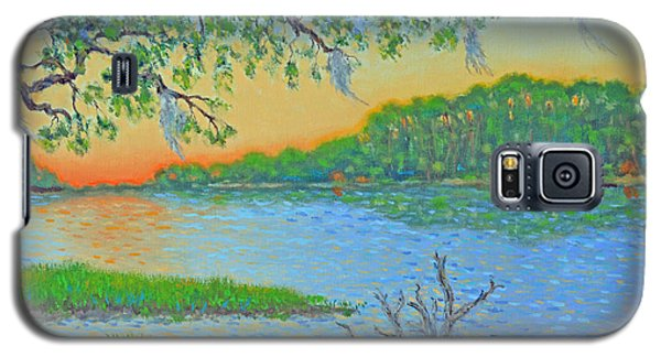 Galaxy S5 Case featuring the painting Hunting Island Lagoon 2 by Dwain Ray