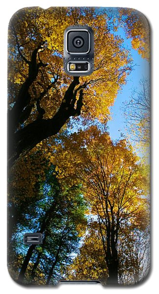 Galaxy S5 Case featuring the photograph Huntington Clearstory by Polly Castor